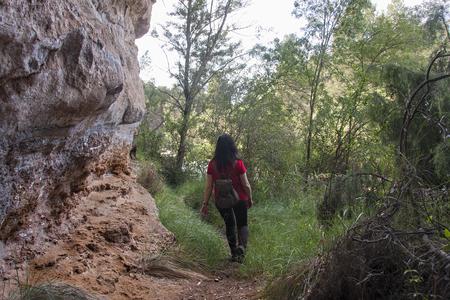 a woman hiking in a rainforest Standard-Bild - 120024655