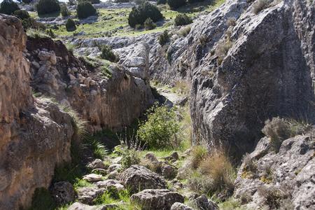 ancient road to castellar de meca, iberic city in spain Standard-Bild - 119985854