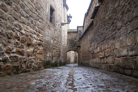 old stoned alley in baeza medieval city, declared along with ubeda Standard-Bild