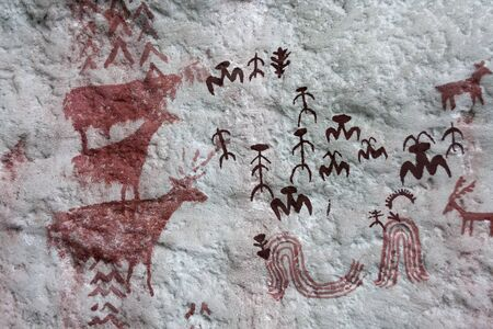 prehistoric cave paintings from first human kinds