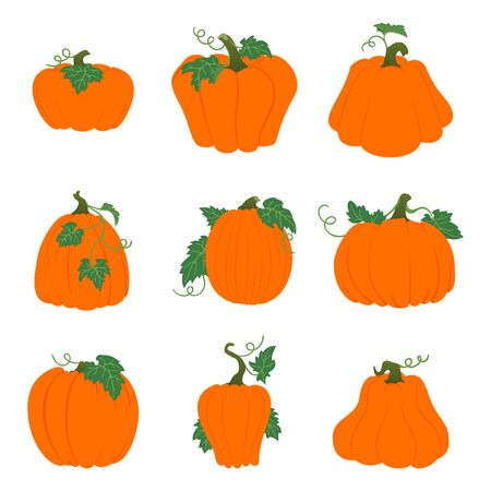 Set of simple orange pumpkins with leaves and vines. Halloween, harvest vector icons. Isolated on white background. Different shapes. Autumn holidays.