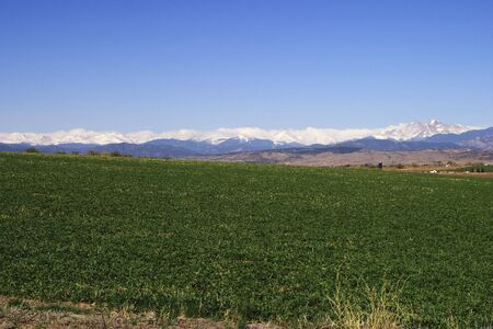 Crop at the foot of the Rocky Mountains