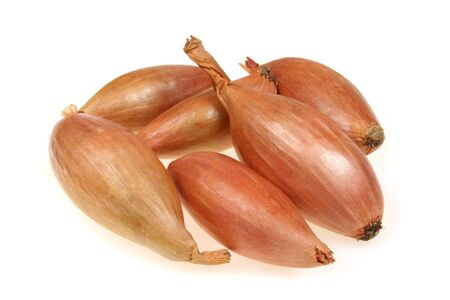 scallion: Shallot or scallion or griselle - vegetables similar to onion