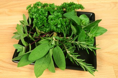 Sage, rosemary and oregano - aromatic herbs Stock Photo - 4944660