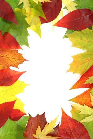 Colorful autumn leaves border or frame. Beautiful seasonal concept. Stock Photo