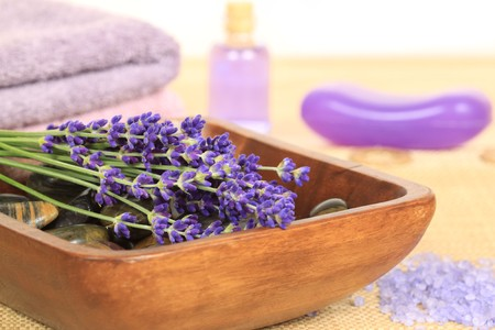 Spa resort and wellness composition - lavender flowers, zen stones photo