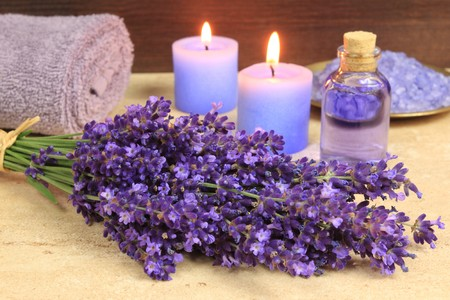 Spa resort and wellness composition - lavender flowers,  sea salt photo