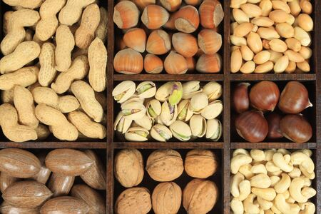 Varieties of nuts: peanuts, hazelnuts, chestnuts, walnuts, cashews, pistachio and pecans. Food and cuisine. Stock Photo - 8246011