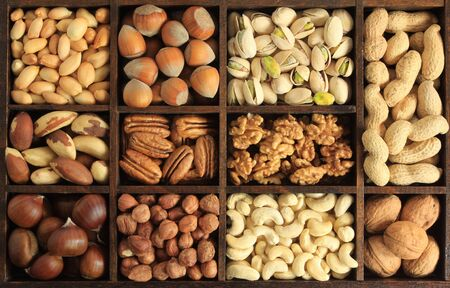 cashew: Varieties of nuts: peanuts, hazelnuts, chestnuts, walnuts, cashews, pistachio and pecans. Food and cuisine.