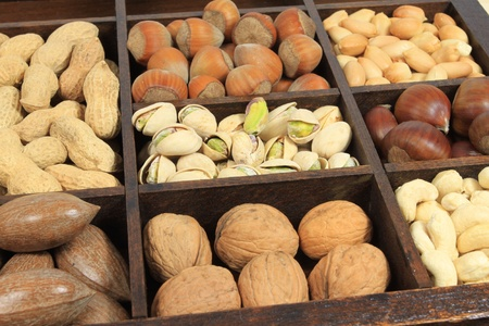 Varieties of nuts: peanuts, hazelnuts, chestnuts, walnuts, cashews and pecans. Food and cuisine. Stock Photo - 8587617