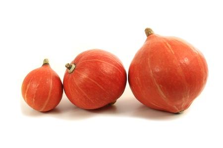 gourds: Three orange hokkaido pumpkins on a white background