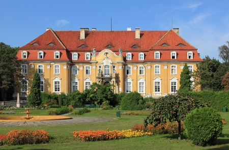 Neo-baroque palace in Kochcice, Poland - converted into a medical rehabilitation facility Stock Photo - 10770309