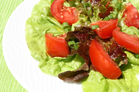 tomatos: Colorful vegeterian salad with lettuce, onions, tomatos.