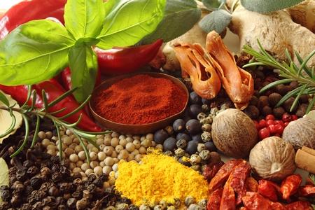epices: Les herbes et les �pices. S�lection Ingr�dients aromatiques et les additifs alimentaires naturels.