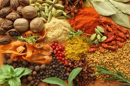Herbs and spices selection. Aromatic ingredients and natural food additives. photo