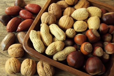 Varieties of nuts: peanuts, hazelnuts, walnuts, and pecans. Food and cuisine. Stock Photo - 14245142