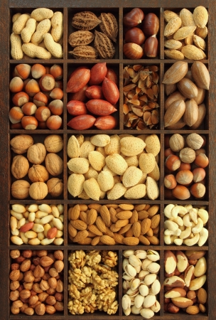 Varieties of nuts: peanuts, hazelnuts, chestnuts, walnuts, cashews, pistachio and pecans. Food and cuisine. Stock Photo - 14245129