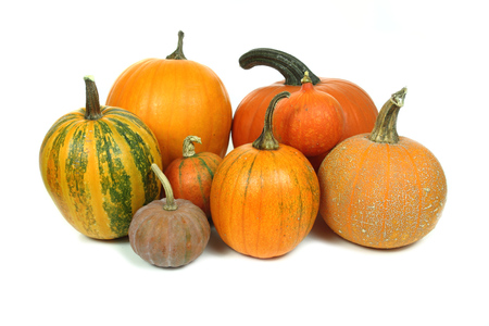Various kinds of pumpkins isolated over white background photo