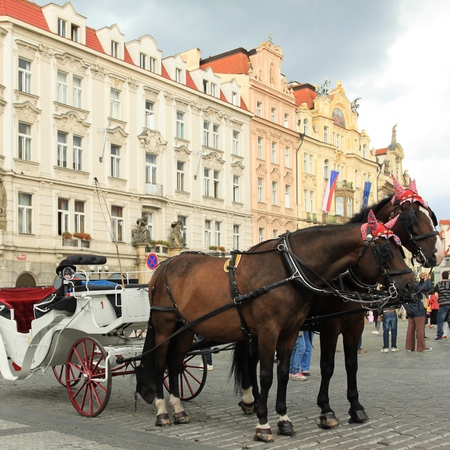 horse drawn carriage: Old Town square in Prague, Czech Republic. Horse drawn carriage. Square composition.