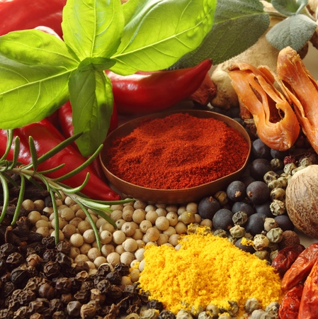 natural selection: Herbs and spices selection. Aromatic ingredients and natural food additives. Square composition. Stock Photo