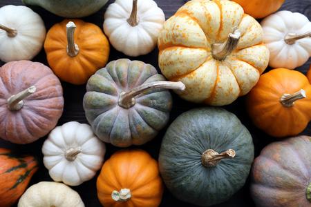 harvest: Diverse assortment of pumpkins on a wooden background. Autumn harvest. Stock Photo