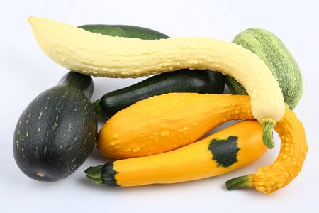 squash: Courgettes and squashes  on a white background.