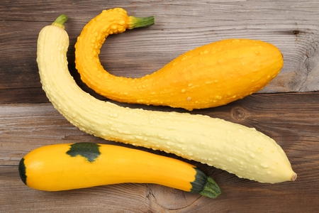 squash: Squash  and zucchini on a wooden background.