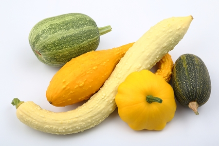 acorn: Courgettes and squash on a white background.