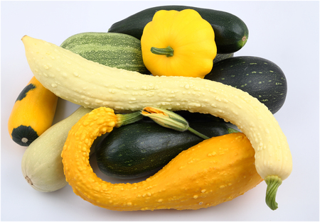 courgettes: Courgettes and squash on a white background.