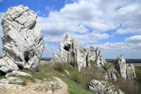 vicinity: Limestone rocks. Landscape from the vicinity of Ogrodzieniec, Poland.