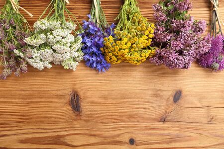 herbary: Different types of fresh herbs on a wooden background. Stock Photo