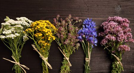 Different types of fresh herbs on a wooden table. Stock Photo