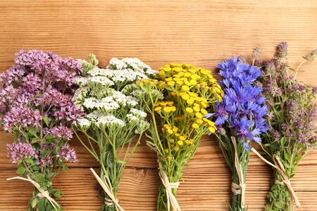 herbal background: Different types of fresh herbs on a wooden background. Stock Photo