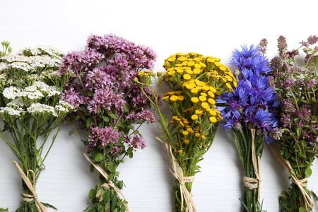 yarrow: Different types of fresh herbs on a white background. Stock Photo