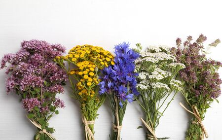 Different types of fresh herbs on a white background. Stock Photo