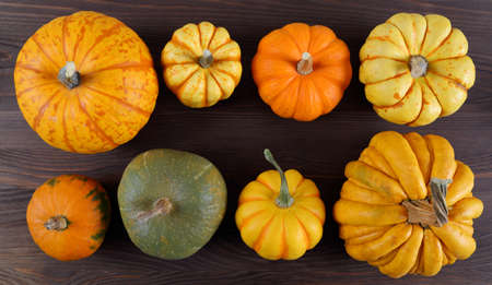 A collection of pumpkins and squash of different types and colors.