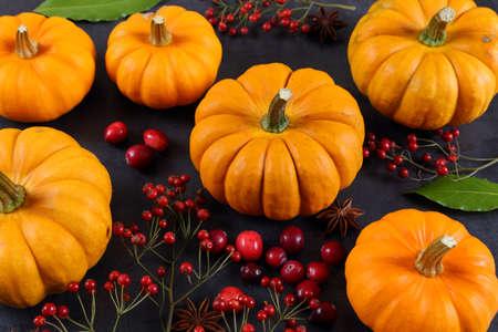 Pumpkins, cranberries and rose hips on a black background.