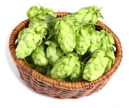 Hop cones in a wicker basket on a white background.