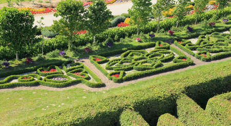 Beautiful original garden decoration. Different types of colorful shrubs and flowers.