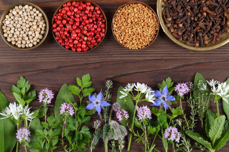Herbs and spices on wooden background. Food and cuisine aromatic ingredients. Top view.