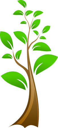 Editable Illustration of vector tree