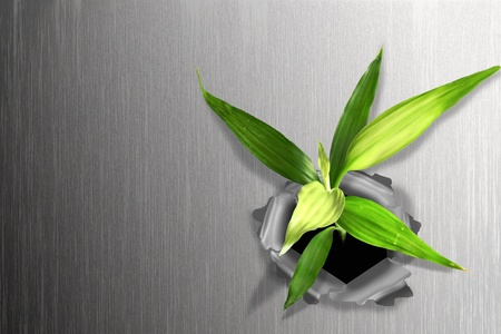 prevail: Plant emerging through hard steel wall. Illustrates the force of nature and fantastic achievements.