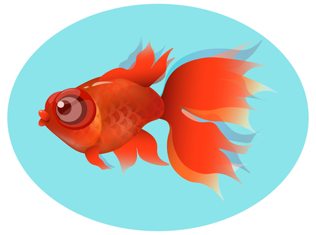 tail fin: goldfish, red fin and tail , gold squama on blue background