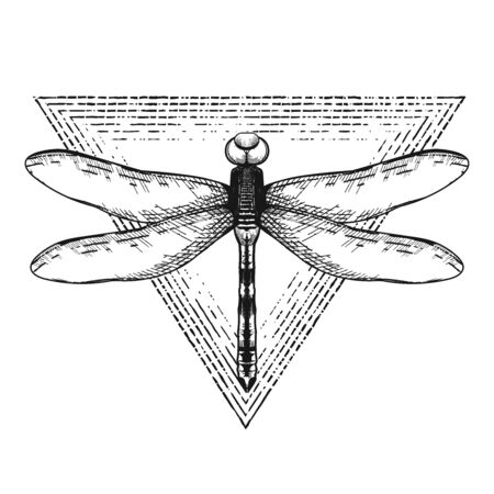 Vintage vector flash tattoo, sticker, patch. Dragonfly with spread wings
