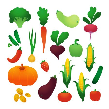Set of vector vegetables. Harvest. Healthy food. Farm organic products.