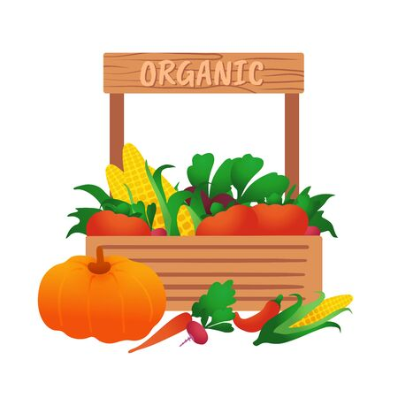 Harvest in a wooden box. Harvested. Vegetables on sale. Vettoriali