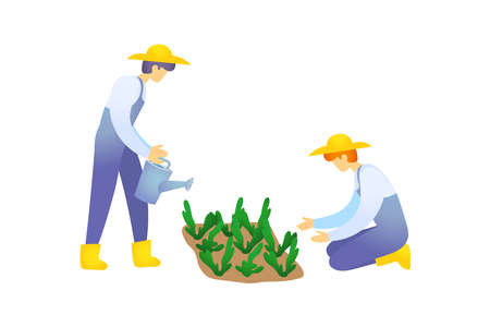 Care and cultivation of crops. Watering plants.