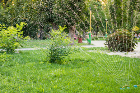 green park: Watering the grass on the lawn in summer park. Stock Photo