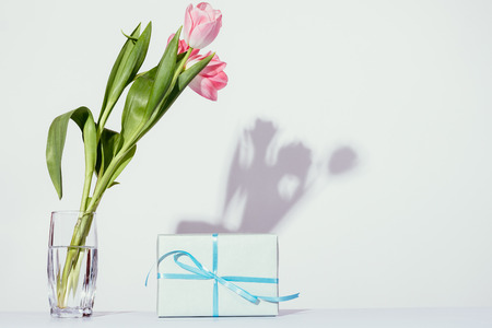 Pink Tulips Bouquet In Glass Vase Next To Gift Box Of Blue Color