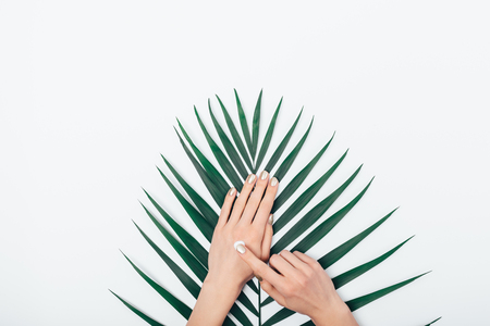 Les mains des femmes à composition plate appliquent une crème cosmétique sur la peau au-dessus de la feuille de palmier sur un tableau blanc, vue de dessus. Banque d'images